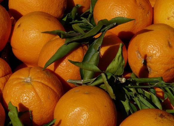 Апельсины во сне