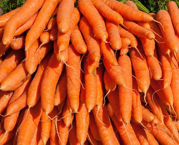 Сажать морковь во сне к чему 95