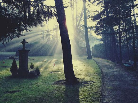 снится смерть родственника
