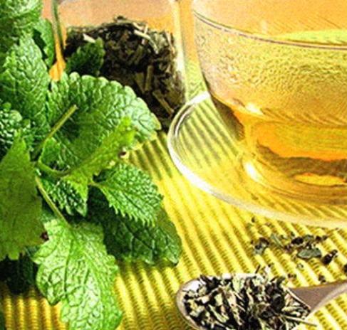 как приготовить чай с мелиссой