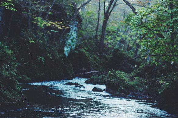 снится ручей