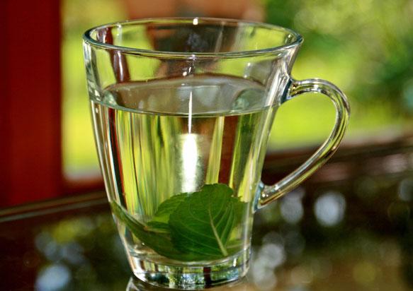 чай с мятой перед сном