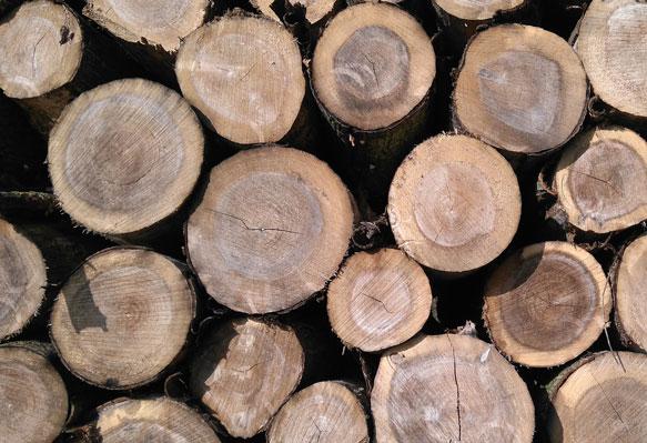 Видеть во сне дрова